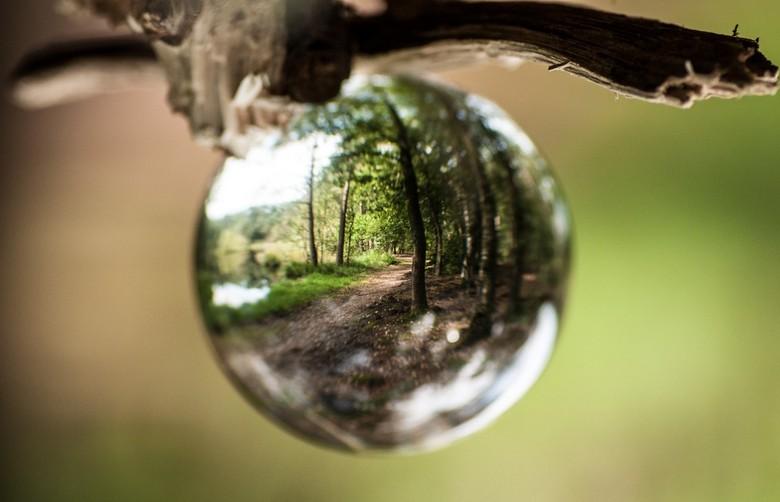 Vision -