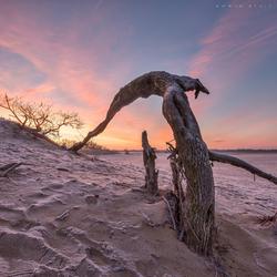 Sunrise Drunense duinen