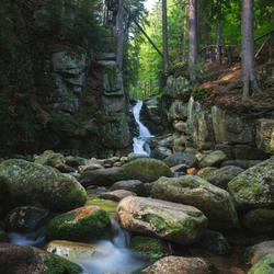 Natural Splendor
