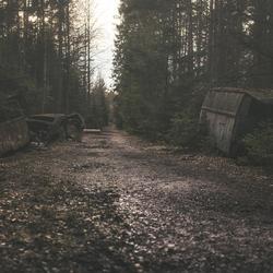 Roestbakken in het bos