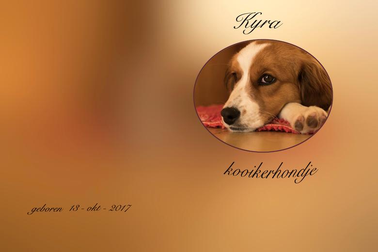 album kyra 0089 -