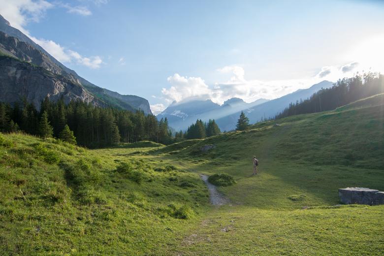 Zwitserse weilanden