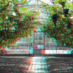 kas Tuin Villa Augustus Dordrecht 3D
