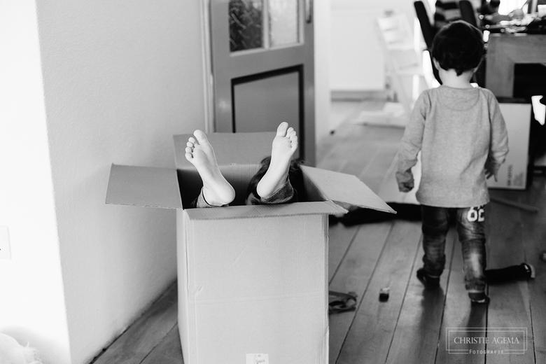 Living in a box - Als een lege doos staat dan moet deze gebruikt worden