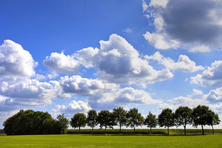 Drenthe 23 -