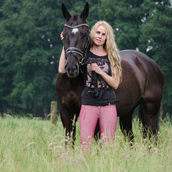 Paard in het hoge gras