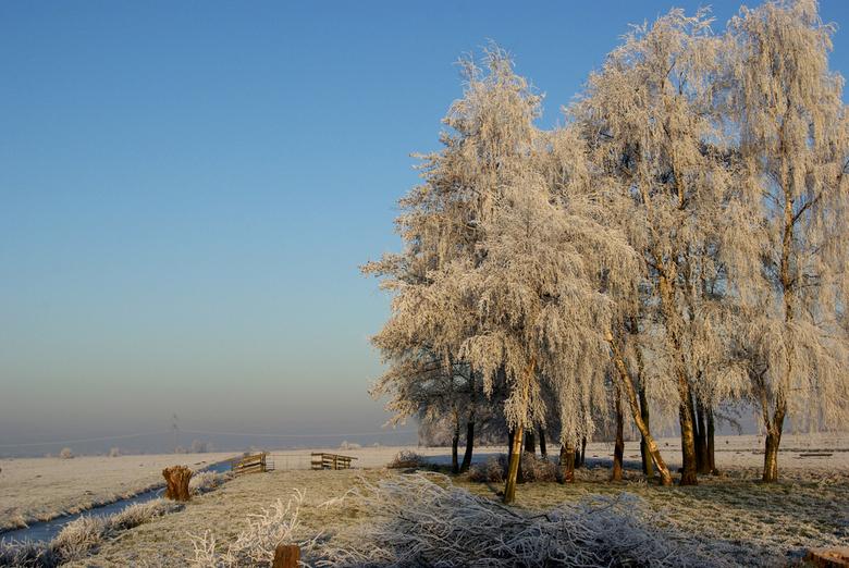 winters plaatje -