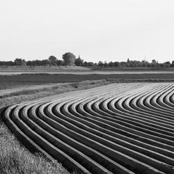 Boerenwerk in B&W
