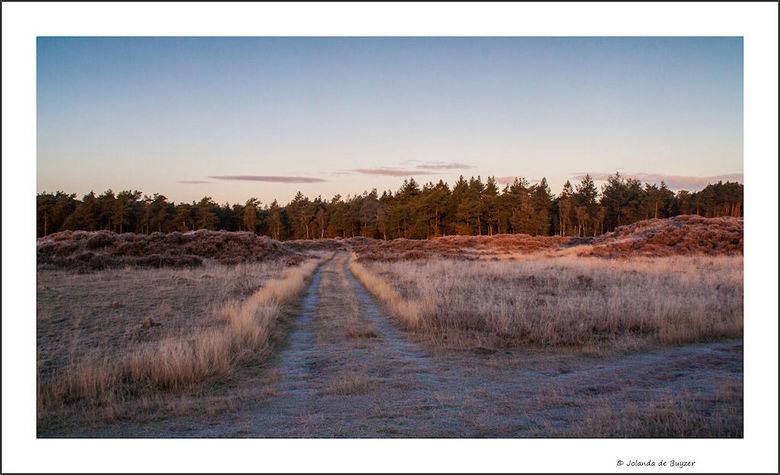 Morning colours.... - Vroege ochtend kleurtjes sieren de natuur bij de Hierdense zandvlakte...
