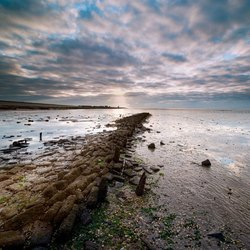 Strekdam nabij Wierum Waddenzee - UNESCO werelderfgoed