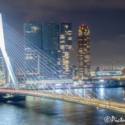 I love you.....Rotterdam