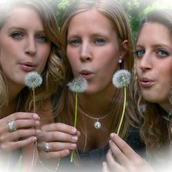 De meisjes met paardebloem