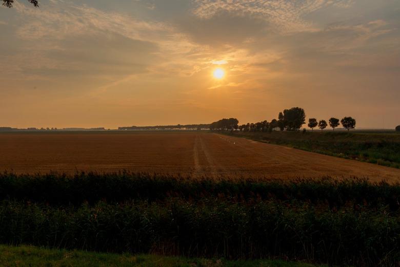 Akker in de polder -
