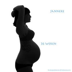 36 weken