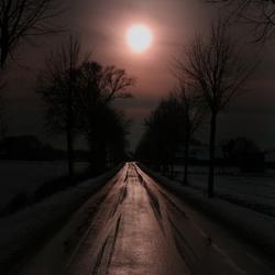 Winterbeeld