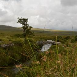 Beekjes en bruggetjes in Dartmoor