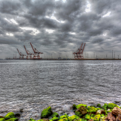 containerhaven amsterdam
