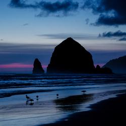 avond @ Pacific USA
