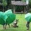 Paraplu's van camping HinTok IMG_4855