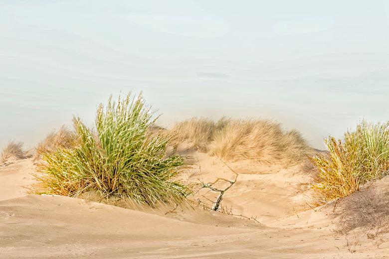 Duinlandschap - Ook hier heb ik twee foto&#039;s van de duinen samengevoegd, ben blij met het resultaat.<br /> <br /> Dank voor jullie reacties bij
