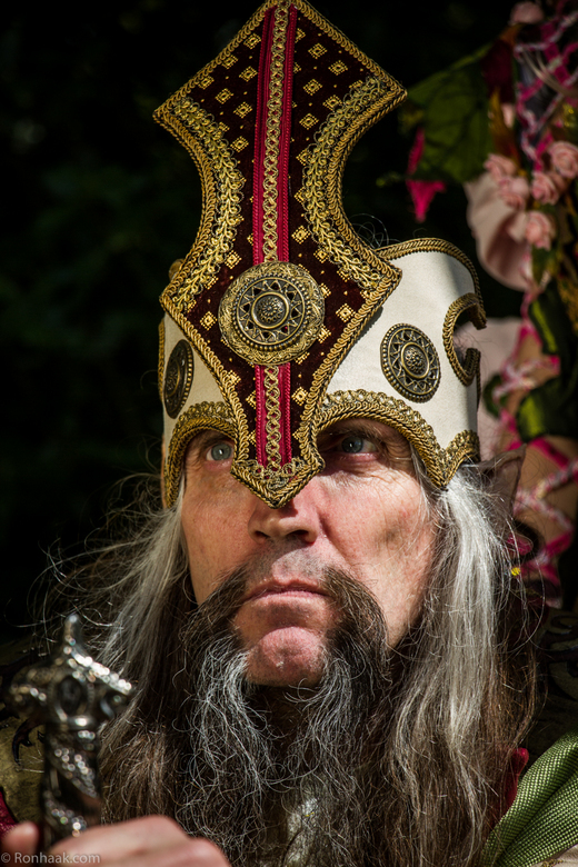 Elfia 2014-8 - It's good to be the king