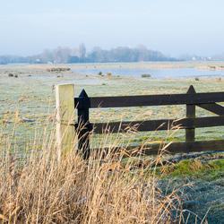 Natuurgebied Zandvoortweg Middelburg