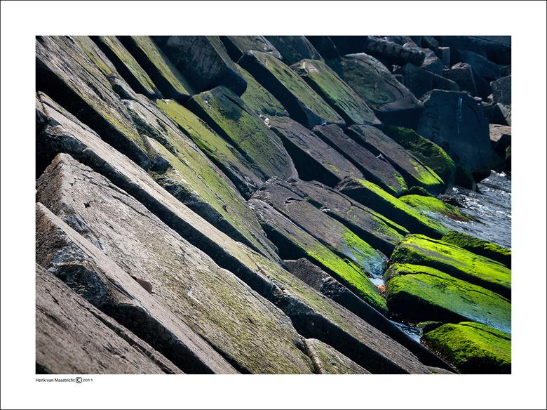 Wijk aan zee-23 - Nog wat alg