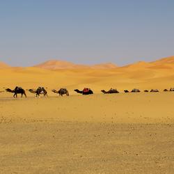marokko 15