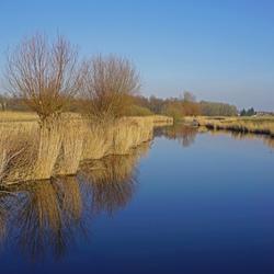 twiske polder