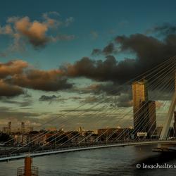 Goodevening Rotterdam