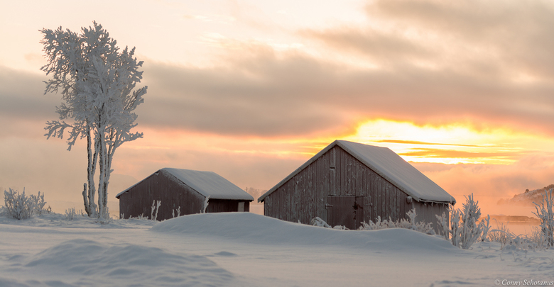 Winter wonderland - In januari 2016 op vakantie naar de Vesteralen in Noorwegen geweest. Op 20 januari kwam de zon op om 10.24 uur en ging onder om 13