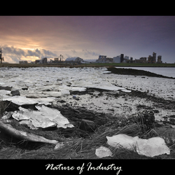 Nature of Industry