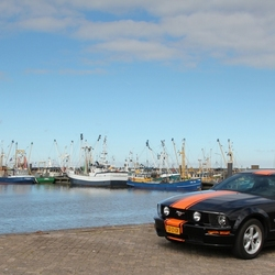 Ford Mustang in de haven