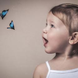 Vlieg door het leven als een vlinder
