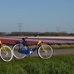 Zelfs de fiets wordt gebruikt . .