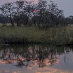 Namibië 207