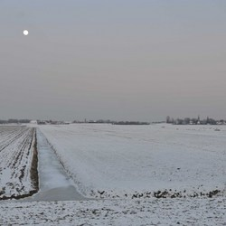 Winter Polderlandschap