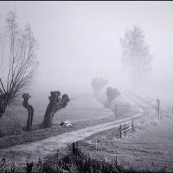 a foggy day..