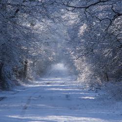 Wintertunnel