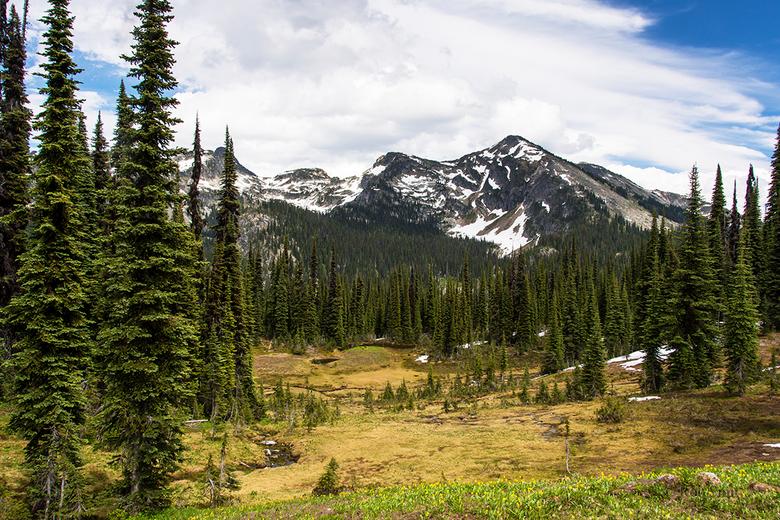 Miller lake trail