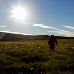 Tegenlicht IJsland
