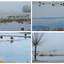 Wintercollage-Foto Dick A.Otten-DAO Fotoarchief