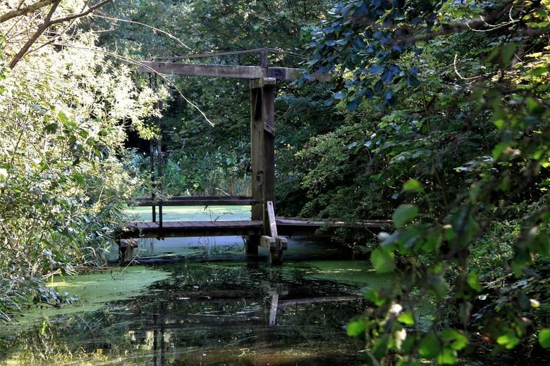 ophaalbrugje - ophaalbrugje in het bosgebied de Uithof   <br /> (den-Haag) <br /> Gtjs.AJ62
