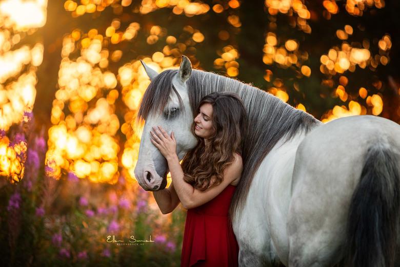 Harmonio - Britt en haar paard Harmonio. Een prachtige combinatie zijn ze samen. Foto genomen tijdens het gouden uurtje in de avond.