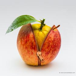 Apple-Orange.jpg