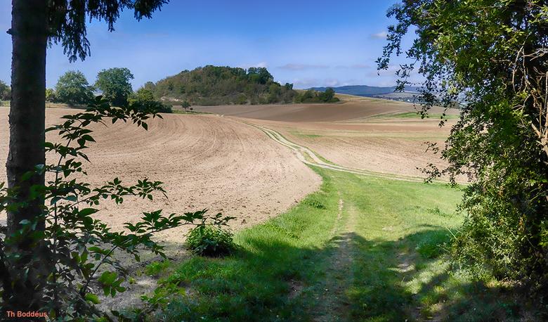 eenvoudig landschap 1 2009100296mniw - weids en rustgevend;  ook agrarisch geruikt gebied kan mooi zijn ..