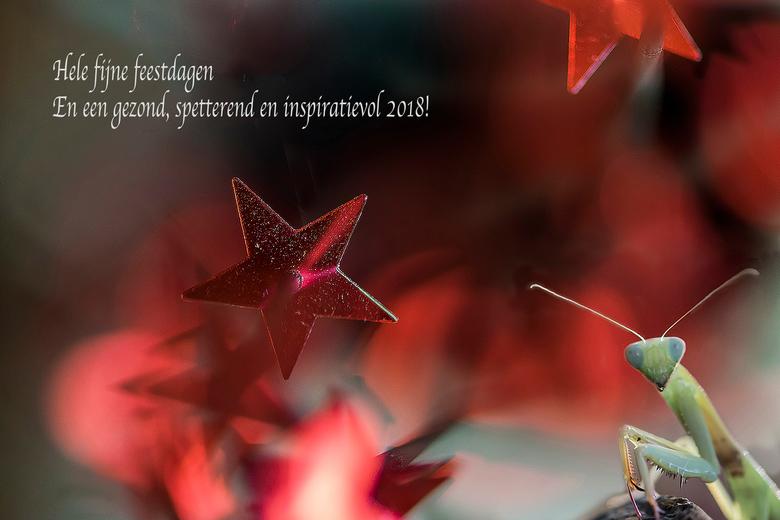 Beste wensen! - Dank voor de support bij mijn vorige foto!<br /> Ik wens jullie alle goeds voor het komende jaar. En dat we maar weer veel mooie foto