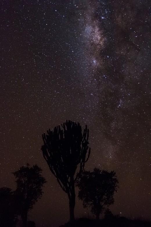 Stars in Uganda