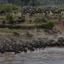 De oversteek van de Mara rivier