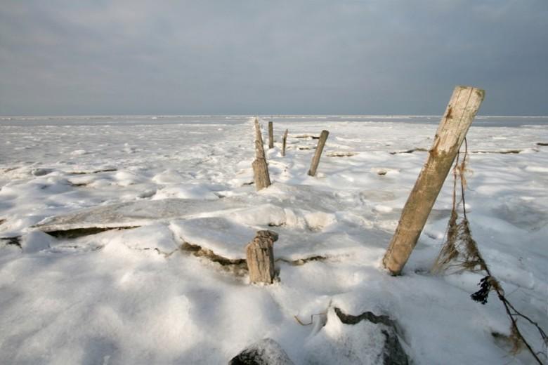 Winterwad II - Het wad in de winter